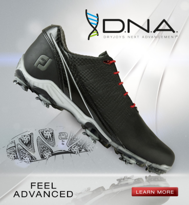 17 DNA Homepage